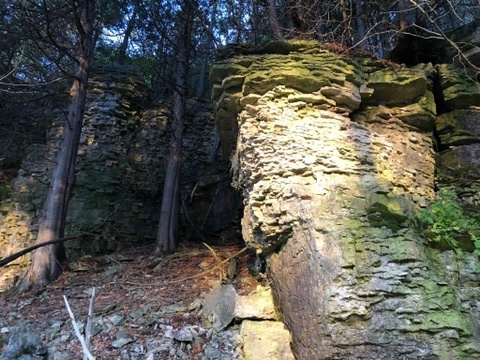 a tower of stratified limestone is lit by the sun in front of 2 cedar trees  surrounded by more stratified rock in the shadows