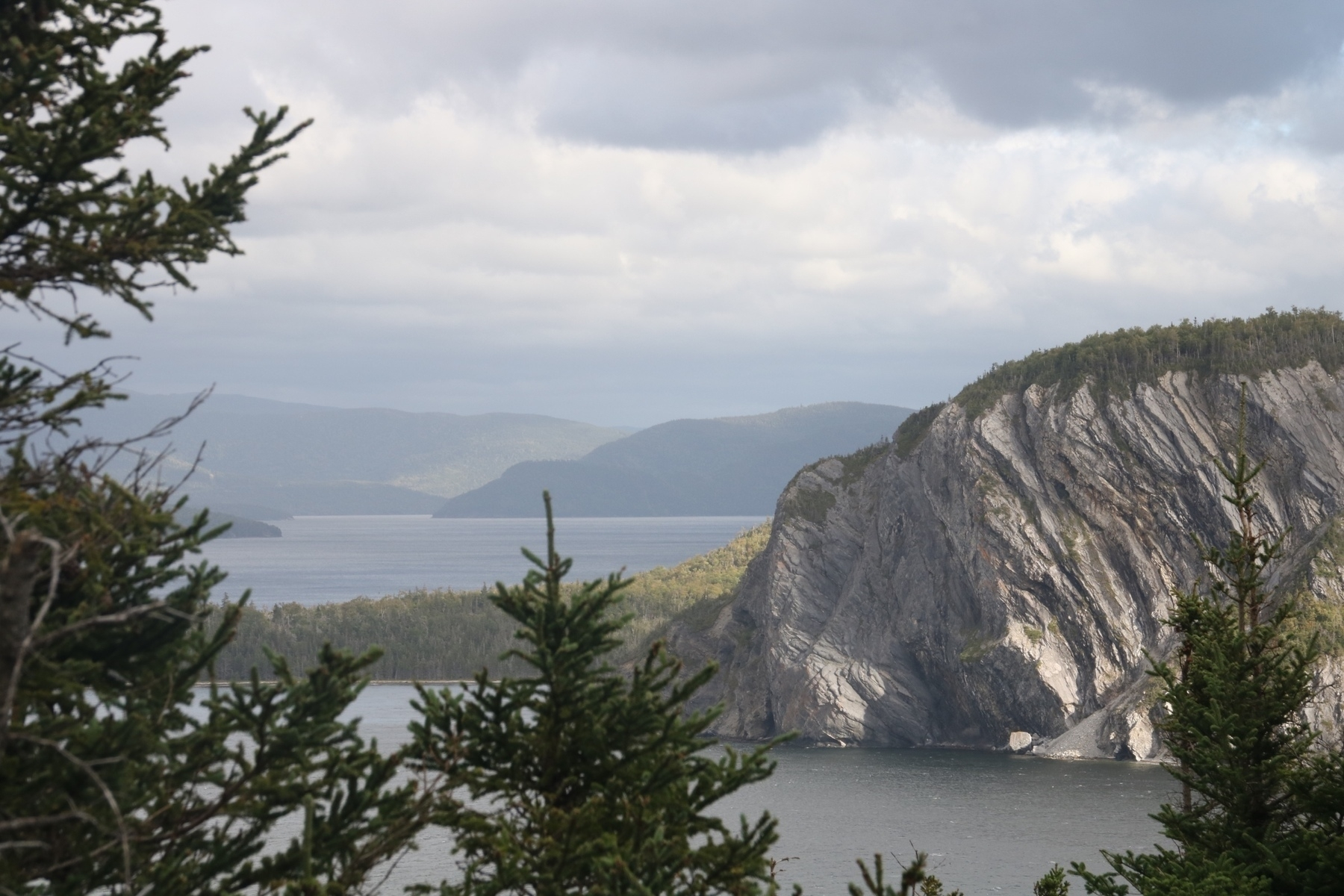 a pair of fir trees frame a rock cliff. several mountains are in the distance above some water